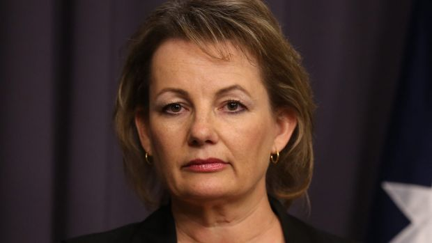 Health Minister Sussan Ley is expected to announce a reform package is being finalised.