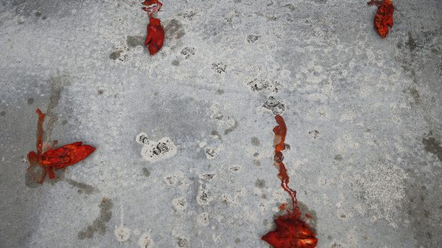 Pigs feet are strewn at the home of dentist Walter Palmer.