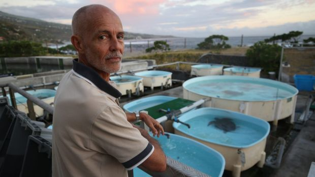 Kelonia director Stephane Ciccione at the turtle sanctuary on Reunion Island.