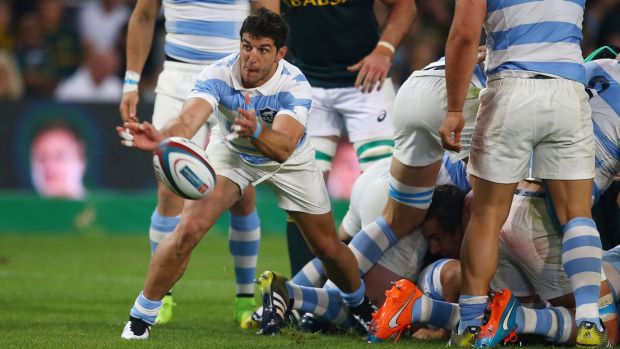 Argentina halfback Tomas Cubelli says the Pumas will play without fear against Australia.