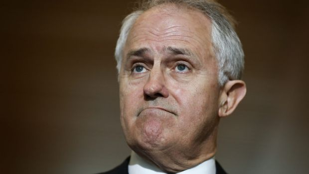 Communications Minister Malcolm Turnbull says the attraction of a free vote for MPs on same-sex marriage was that it ...