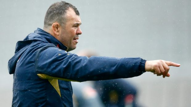 Michael Cheika wants the Wallabies to embrace the increased attention in England.