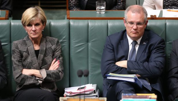 Ms Bishop's support for the principle of the reform means Scott Morrison is the only potential Liberal leadership ...