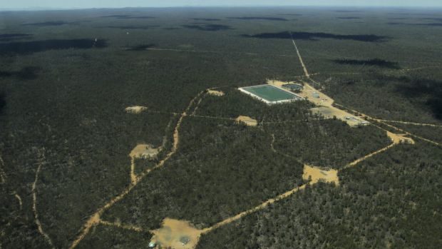 Santos' Bibblewindi CSG wastewater ponds in the Pilliga State Forest. Two-thirds of the 425 well pads are planned for ...