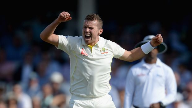 Primed for comeback: Peter Siddle of Australia.