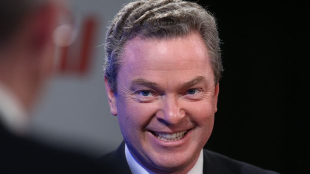 """Education Minister Christopher Pyne says Treasurer Joe Hockey is """"perfectly entitled"""" to co-chair the parliamentary ..."""