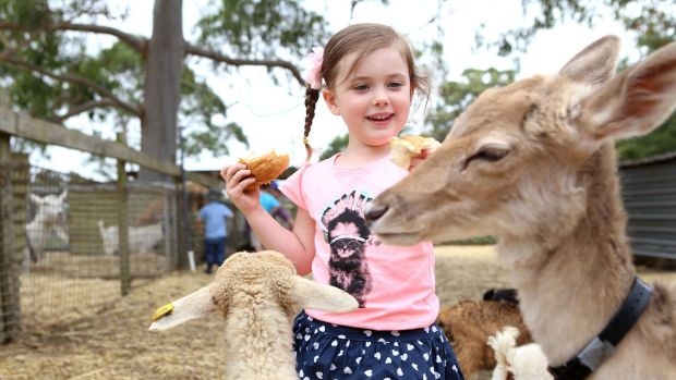 Scientists have uncovered why children who live on farms are protected from allergies.
