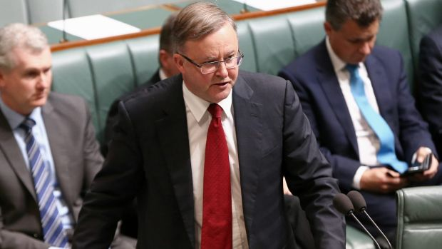 Anthony Albanese, who holds the inner western Sydney seat of Grayndler, has been linked to a switch to the neighbouring ...