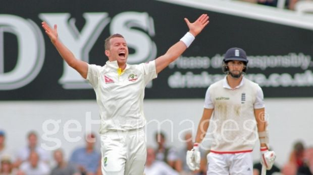 Likely selection: Peter Siddle during the final Test of the Ashes.