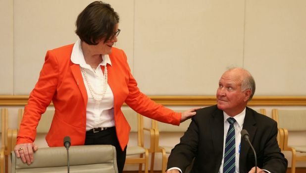 Independent MP Cathy McGowan and former MP Tony Windsor during the launch of the report.
