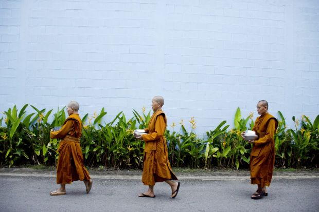 the rise of buddhism