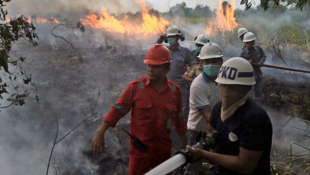 Firemen on the frontline in South Sumatra at the weekend. Wildfires caused by illegal land clearing on Indonesia's ...