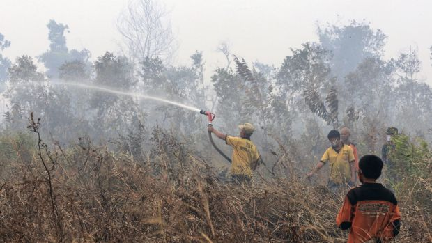 Indonesian firefighters work on a field in Timbangan, South Sumatra, at the weekend.