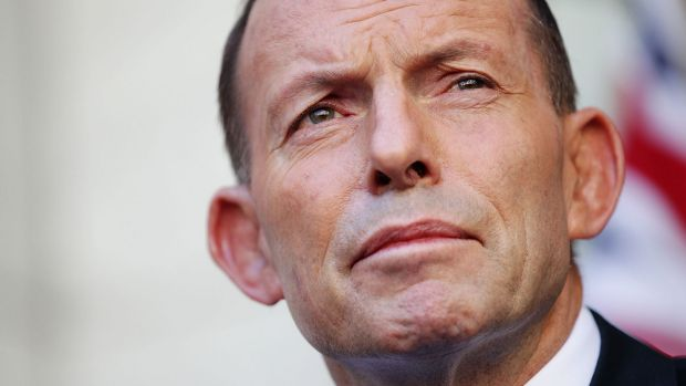 "Tony Abbott says no leader can achieve anything if they are ""subject to death by opinion poll""."