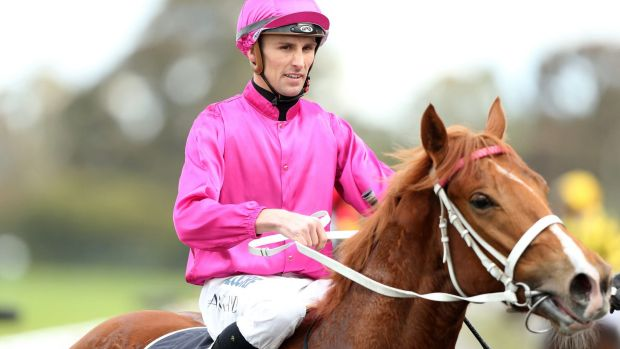 Targeted: Jockey Tye Angland found his car damaged after a luckless day at Rosehill on Saturday.