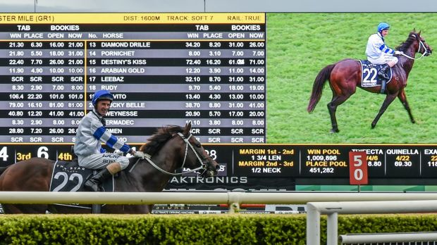 Back for more: Kermadec scored in this year's Doncaster Mile.