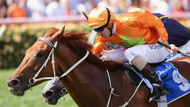 Simply the best: Hugh Bowman and Terravista take out The Darley Classic at Flemington.