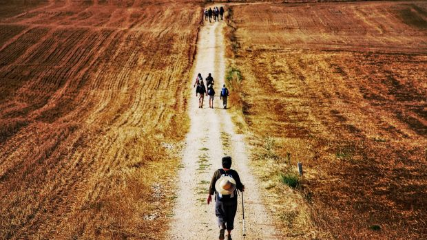 Pilgrims walking along the Camino de Santiago in Spain.
