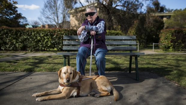 Lyneham resident, Anna Saxon waiting for a bus with her guide dog. She finds it very difficult to get around Canberra ...