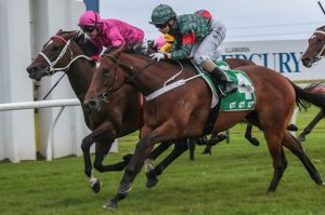 Back in form: Slightly Sweet wins the Keith Nolan Classic at Kembla Grange a couple of years ago.