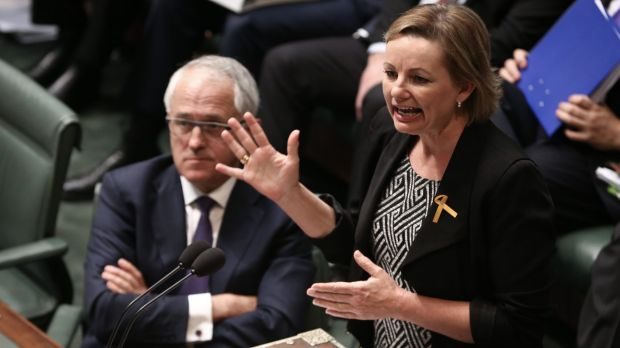 Prime Minister Malcolm Turnbull and Health Minister Sussan Ley during question time.
