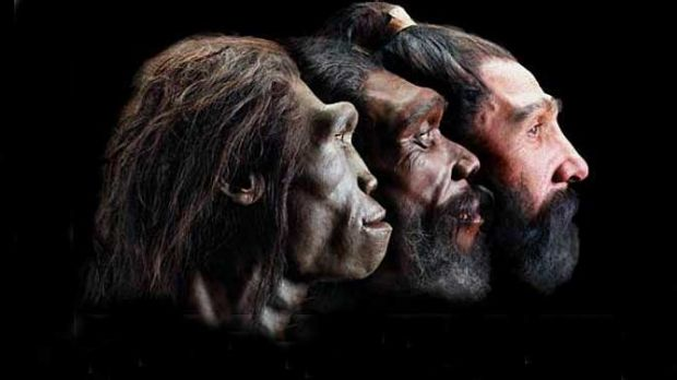 A 2011 study found 70 per cent of US high school biology teachers avoided taking a hard stance on evolution in the classroom.