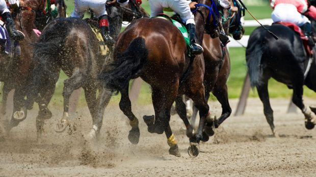 Generic horse racing on a dirt track.