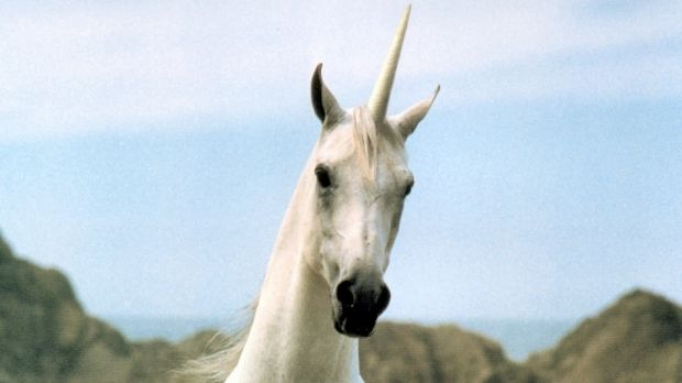 The danger of being an overvalued unicorn.
