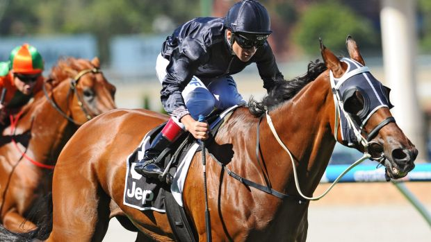 Mourinho was allowed to take part in Saturday's group 1 Orr Stakes at Caulfield after he was kicked as horses milled ...