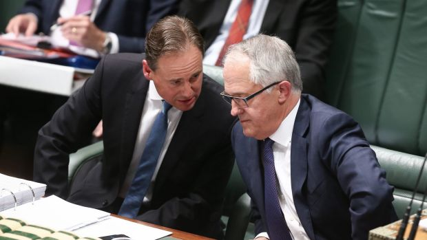 Environment Minister Greg Hunt, with Prime Minister Malcolm Turnbull, announced on Thursday the mine would proceed.
