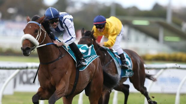 Missed opportunity: Impressive Amelie's Star won't be backing up in next week's group 1 The Metropolitan.