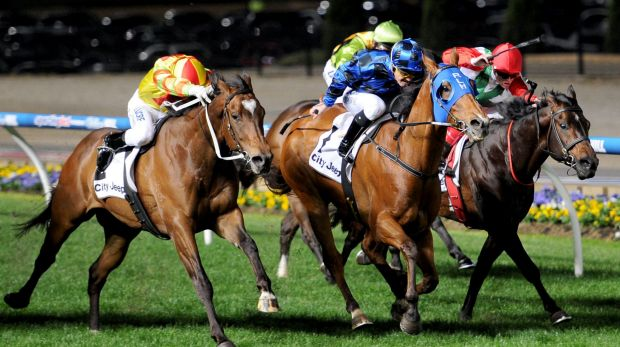 Buffering (centre) with Damian Browne in the saddle, defeats Lankan Rupee (left – Craig Newitt up) and Rebel Dane (Craig ...