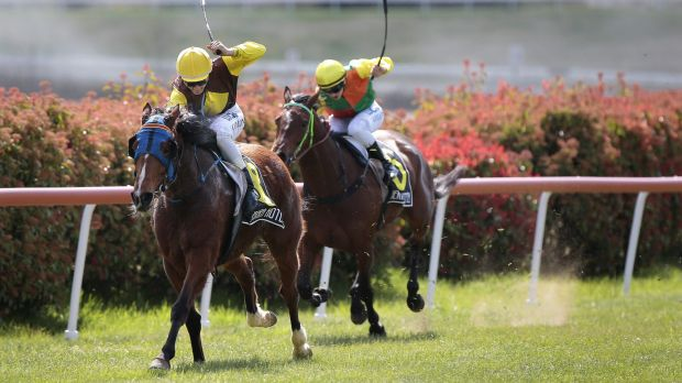 Jason Collins, left, on Little Miss Chelsy wins the benchmark 50 handicap at Queanbeyan.