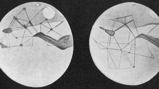 """Martian """"canals"""" as depicted by astronomer Percival Lowell."""
