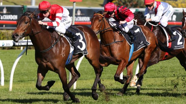 Inspection needed: Kimberley Star will be checked before running at Randwick on Saturday.