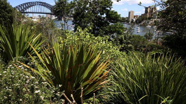 Wendy Whiteley's 'Secret Garden' has its future guaranteed.