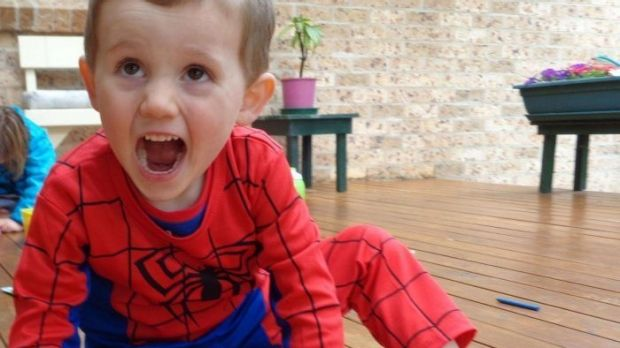 Court reveals William Tyrrell was in foster care when he went missing
