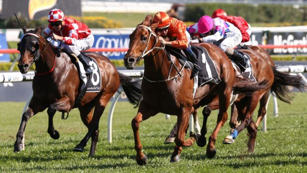 He's back: Terravista (No.1) and Hugh Bowman steam to victory in the group 2 Premiere Stakes at Randwick on Saturday.