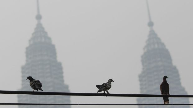 Pigeons on a power cable near Malaysia's landmark structure, Petronas Twin Towers, shrouded with haze in Kuala Lumpur on ...
