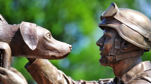"The dedication ceremony for the Australian War Memorial's Explosive Detection Dog and Handler Sculpture ""Elevation of ..."