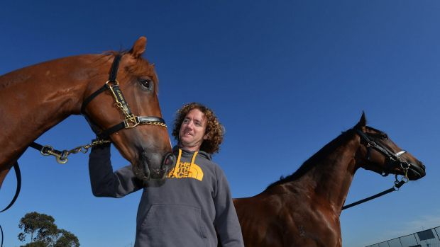 In good shape: trainer Ciaron Maher with Set Square.