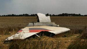 A portion of a MH17 wing lies in a field as smoke rises behind the treeline where fighting continued close to the crash site.