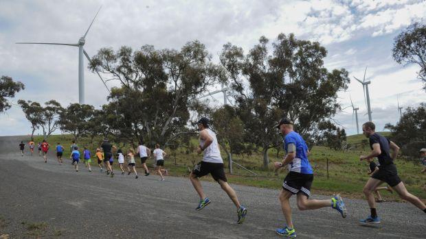 Participants could choose between a five or 10 kilometre run.