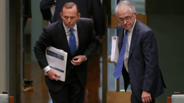 It has been five weeks since Malcolm Turnbull successfully challenged Tony Abbott for the Liberal leadership.