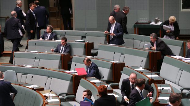 Backbencher Tony Abbott at the end of question time on Monday.