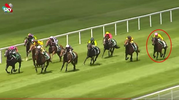 Coming from behind: Gust of Wind pulled out an amazing finish at Scone.