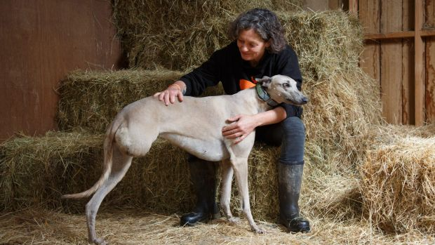 Emma Haswell, with Jenny, one of her rescued greyhounds.