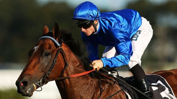 Fighting fit: Hauraki is in fine fettle as he prepares to resume at Randwick on Saturday.