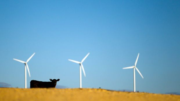 Wind turbines are key parts of the renewable  grid, which acts like a giant battery.
