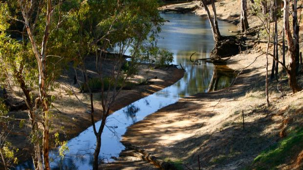 Reforms for the 23 river systems that make up the Murray-Darling Basin are largely slowed to a trickle, the Westworth ...